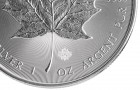 Maple Leaf 1 Oz - Silver Coin - 100 pcs