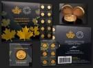 Maplegram25™ -  Zlaté mince 25 x 1g