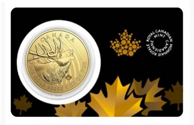Elk 2017 1 Oz - Gold Coin