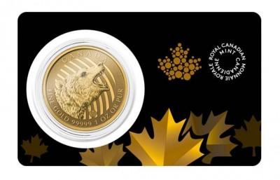 Roaring Grizzly 2016 1 Oz - Zlatá mince